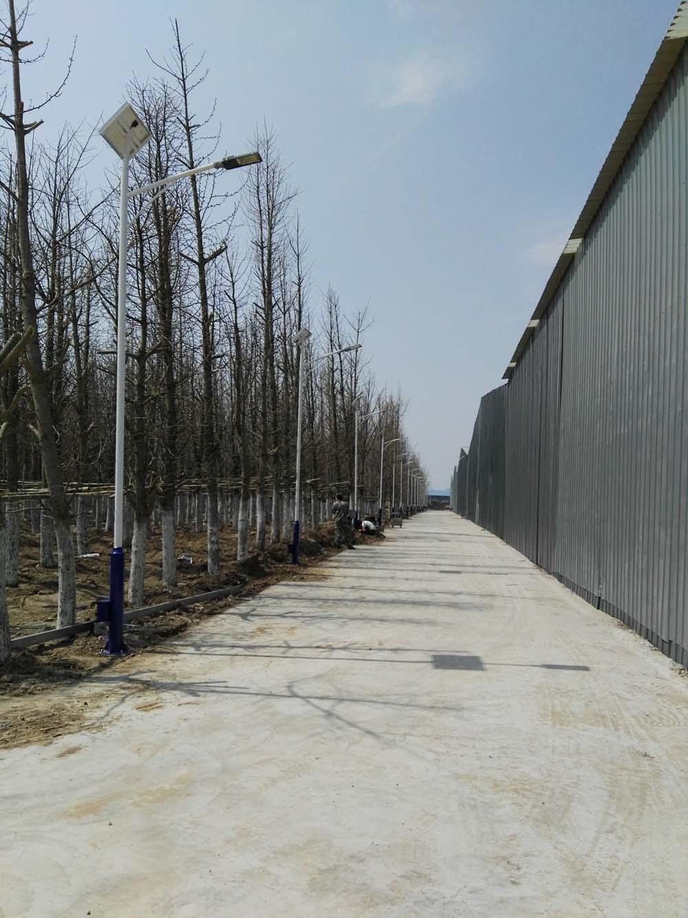 通州后屯村太阳能路灯工程