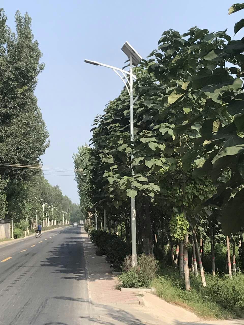香河县堤顶路景观亮化工程
