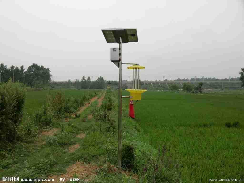新疆库尔勒示范推广太阳能杀虫灯