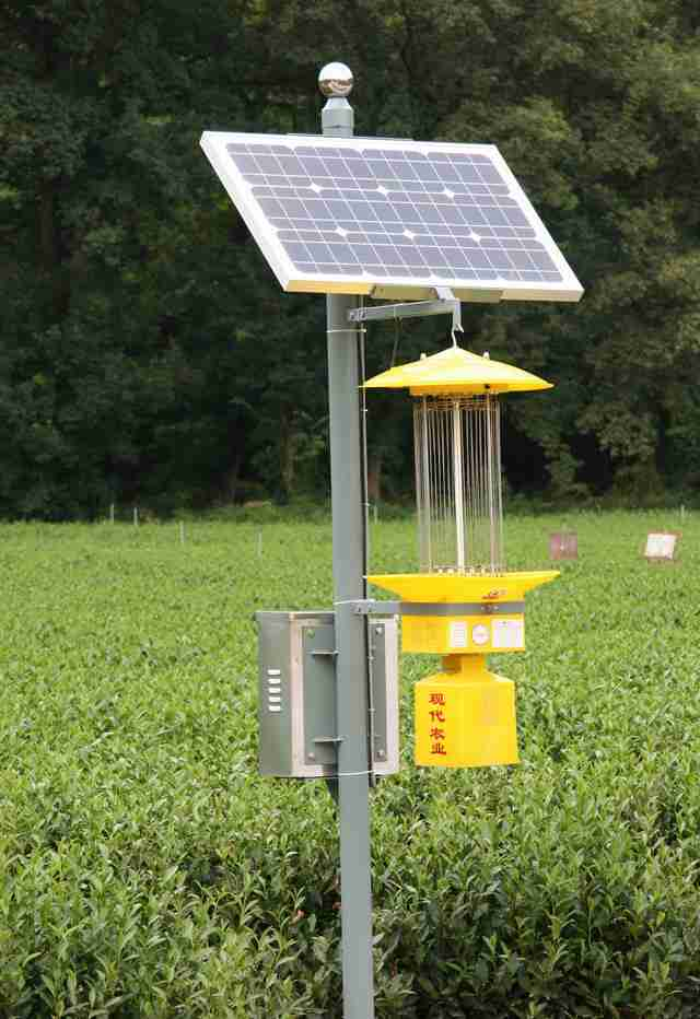 太阳能杀虫灯有哪些优势