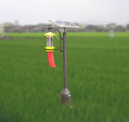 今年将安装太阳能杀虫灯1700盏