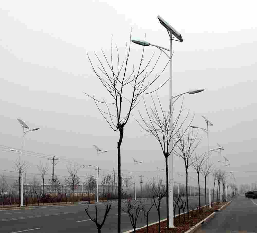 甘肃中共康县委农村太阳能路灯工程第二次公开招标公告